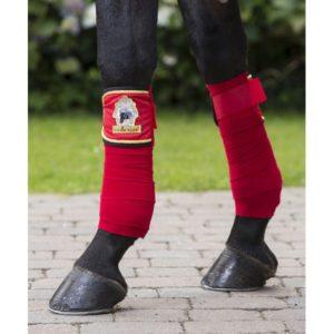 Clinique de perfectionnement: L'équipement de protection du cheval @ Centre Equestre des Mille-Iles